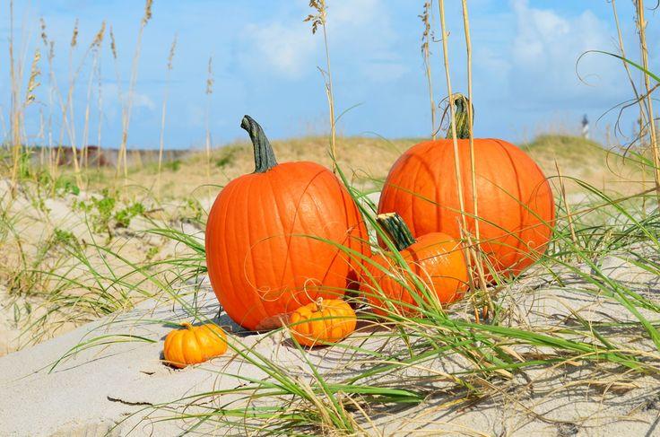 Fall-Beach